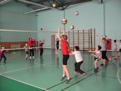 Детская волейбольная секция